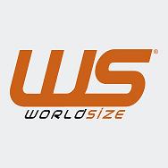 WS World Size