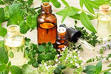 oleo vegetal