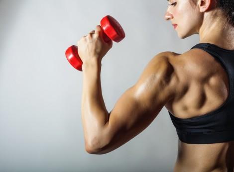 definicao muscular feminino