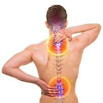 suplementos para osteoporose